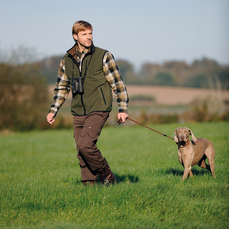 Dog Training & Accessories